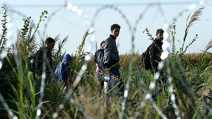 W Turcji zatrzymano ponad 300 nielegalnych migrantów