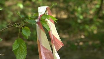 Wywieźli 36-latka do lasu, gdzie zmarł. Koniec procesu byłych policjantów